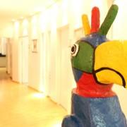 Papagei aus der Praxis